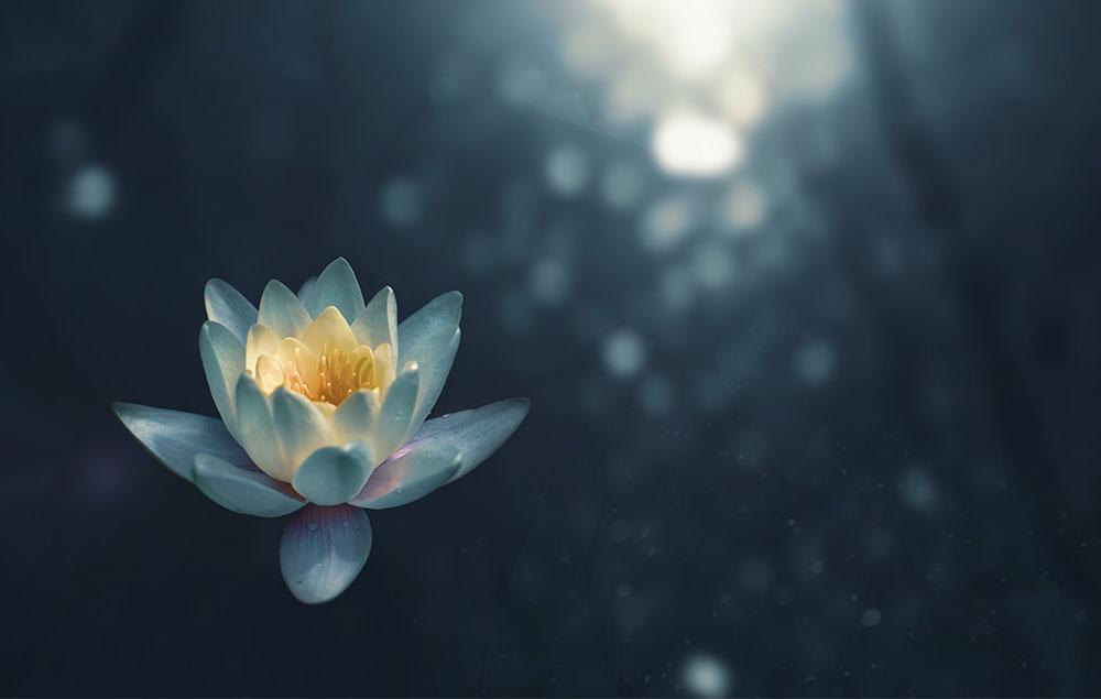 six-harmonies-meditation-03